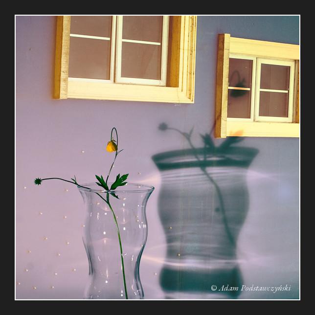 تصاویر جدید زیباسازی وبلاگ , سایت پیچك » بخش تصاویر زیباسازی » سری چهارم www.pichak.net كلیك كنید